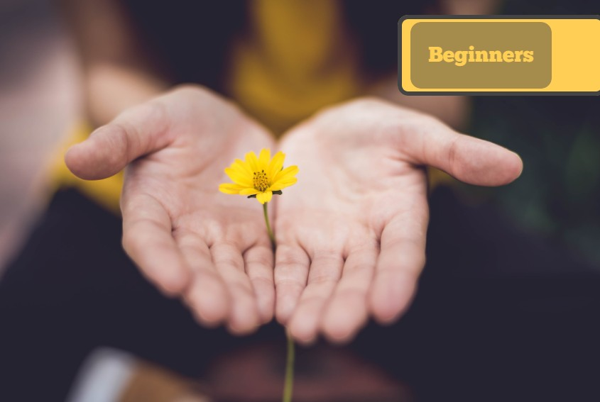 Beginners Online Course: Introduction to Massage